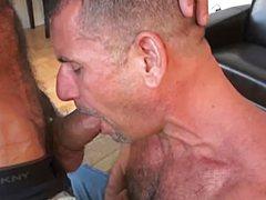 Ненасытный жеребец выебал волосатое очко парня