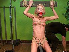 Блонде связанной пизду трахает кобель игрушками